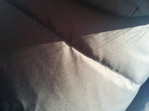 An Accidental Photo Of Someone's Jacket
