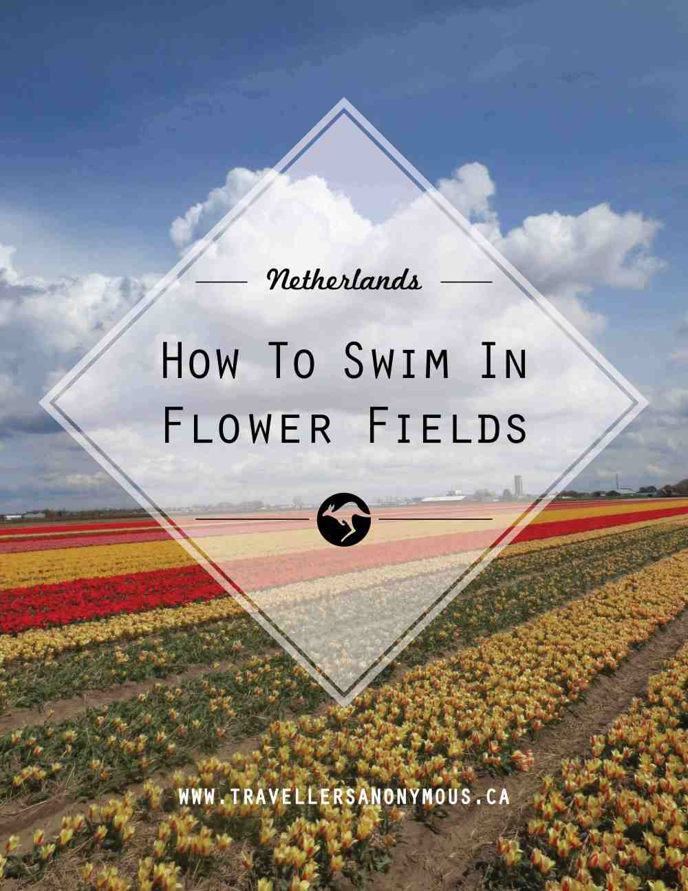 How To Swim In Flower Fields PINTEREST
